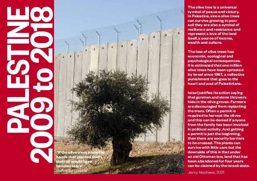 Palestine Zine